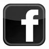 facebook logo 100