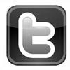 twitter logo100